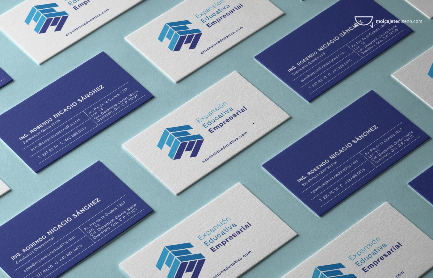 Identidad Corporativa Expansión Educativa Empresarial
